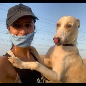 Aisha& Winston' dog boarding Dubai your kennel and dog hotel alternative