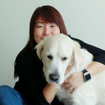 Animal & Dog Lover! dog boarding Dubai better than kennels and dog hotels