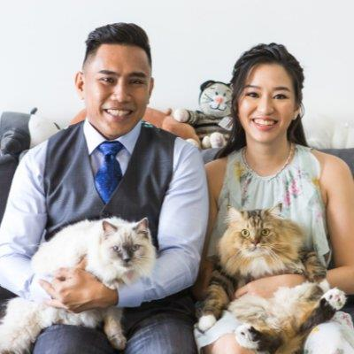 Cat Loving Fami dog boarding Dubai your kennel and dog hotel alternative