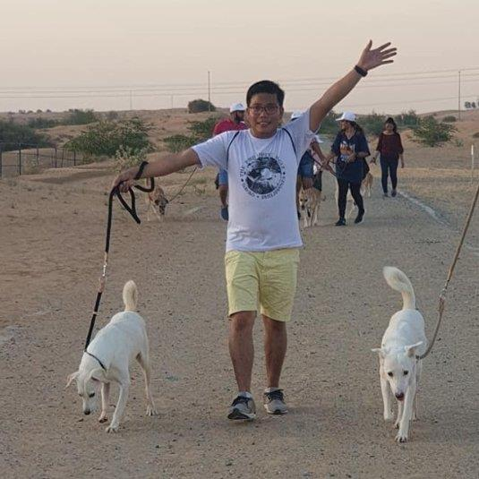 Dogs Best friend dog boarding Dubai better than kennels and dog hotels
