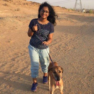 Major Animal Lover dog boarding Dubai better than kennels and dog hotels