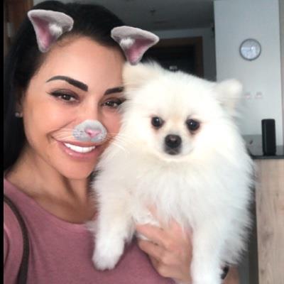Missing my furr dog boarding Dubai your kennel and dog hotel alternative