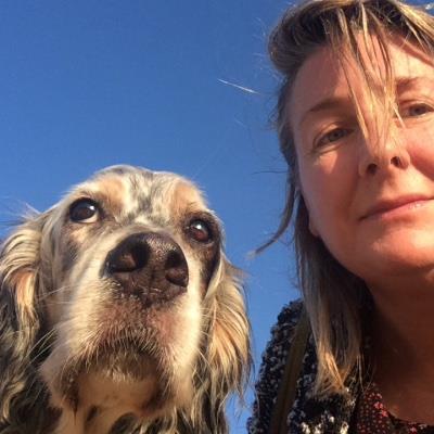 In-home petsitt dog boarding Dubai your kennel and dog hotel alternative