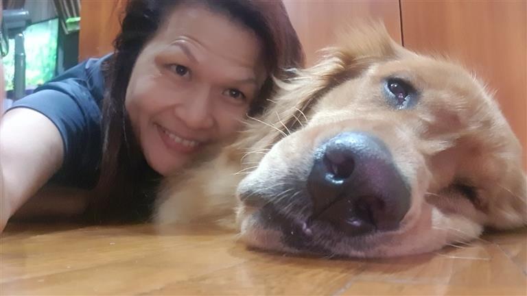 Jennifer  Dog boarding, Pet Boarding, Dog Walking and Pet Sitting.