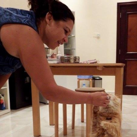 Bonita Pet hotel experience in real homes! 1