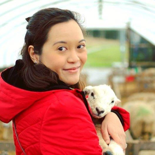 Nadiah Pet hotel experience in real homes! 1