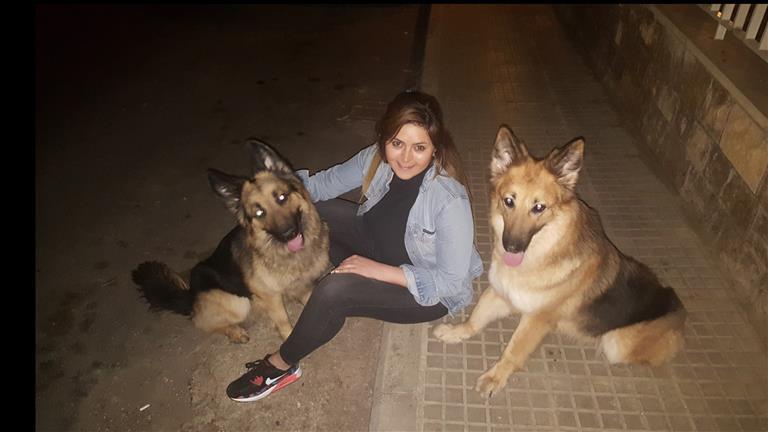 Ghadir Dog boarding, Pet Boarding, Dog Walking and Pet Sitting.