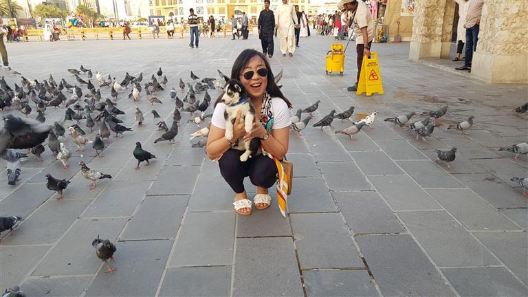 Nikki Joy Dog boarding, Dog Walking and Pet Sitting, Pets Second Home.
