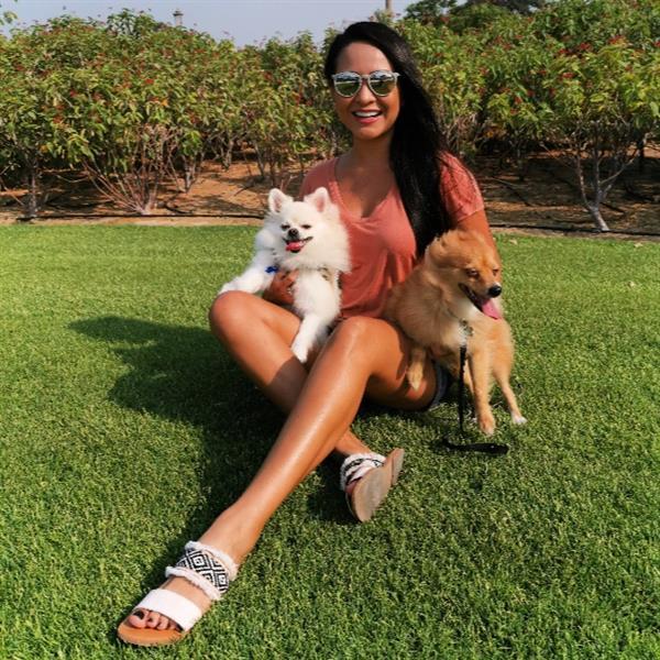 Natalia Posada Pet hotel experience in real homes! 14