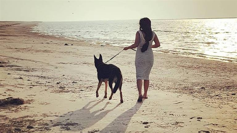 Karla Dog boarding, Pet Boarding, Dog Walking and Pet Sitting.