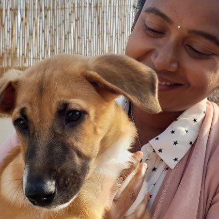 Sangeetha  Pet hotel experience in real homes! 2