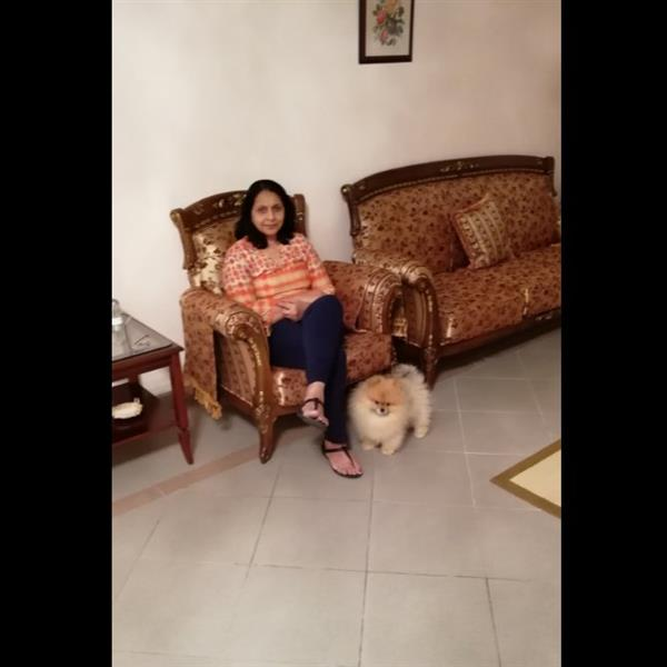 Leena Pet hotel experience in real homes! 1