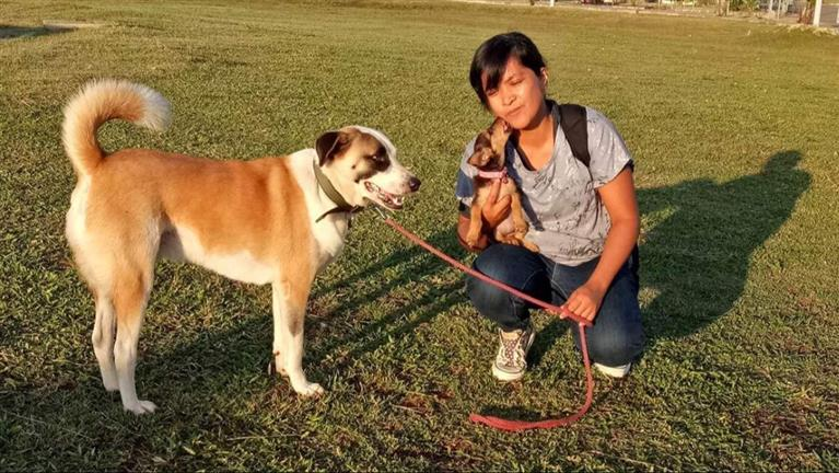 Klarissa Dog boarding, Pet Boarding, Dog Walking and Pet Sitting.