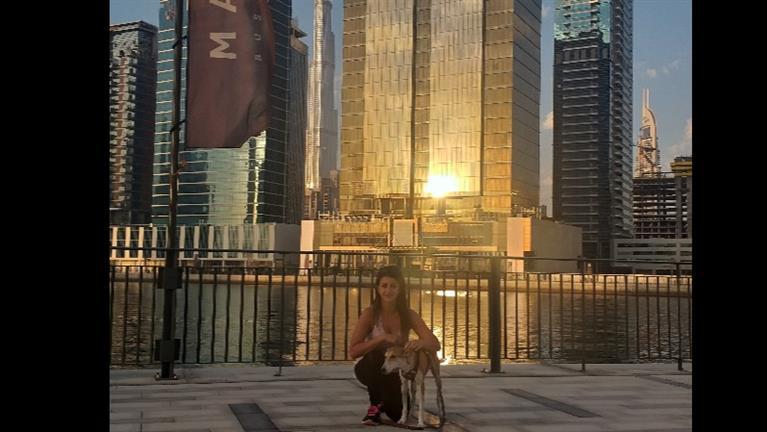 Stephanie Dog boarding, Pet Boarding, Dog Walking and Pet Sitting.