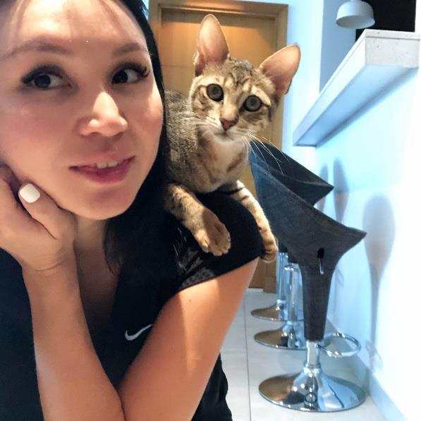 Merim Pet hotel experience in real homes! 13