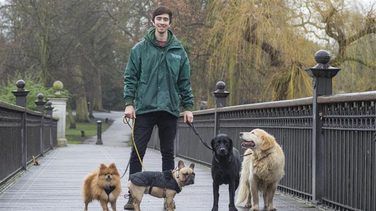 Jmy Dog boarding, Pet Boarding, Dog Walking and Pet Sitting.