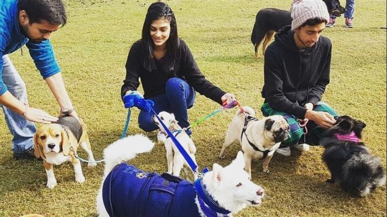Tanvi  Dog boarding, Pet Boarding, Dog Walking and Pet Sitting.