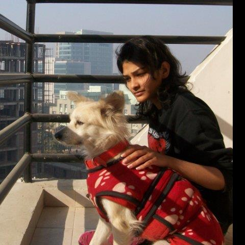 Tanvi  Pet hotel experience in real homes! 6