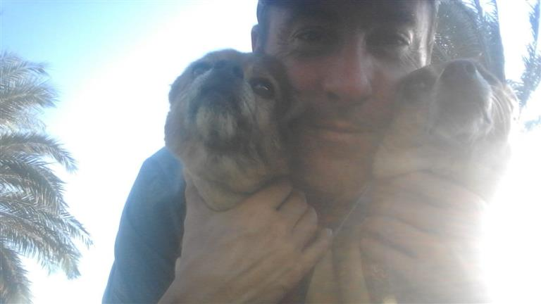 steve Dog boarding, Pet Boarding, Dog Walking and Pet Sitting.
