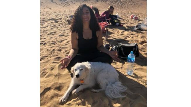 Menna Dog boarding, Pet Boarding, Dog Walking and Pet Sitting.