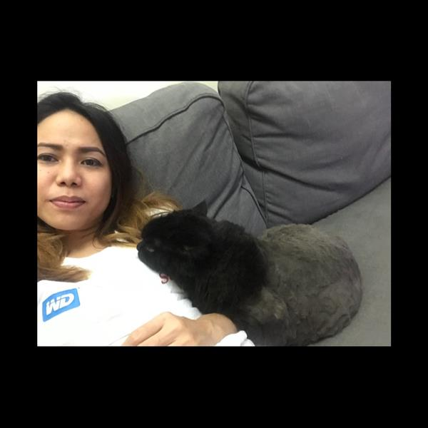charmaine Pet hotel experience in real homes! 1