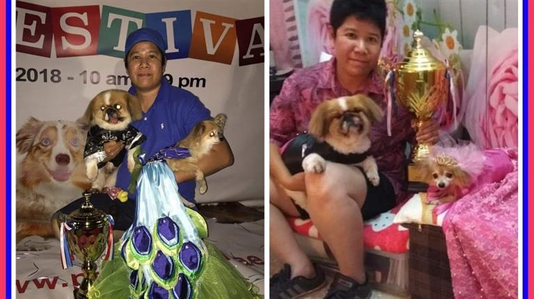 Sheryl Dog boarding, Pet Boarding, Dog Walking and Pet Sitting.