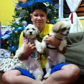 Sheryl Pet hotel experience in real homes! 6