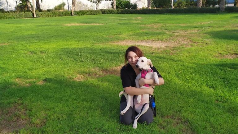 Laura Dog boarding, Pet Boarding, Dog Walking and Pet Sitting.