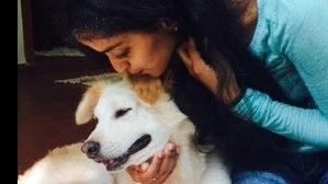 Priya Dog boarding, Pet Boarding, Dog Walking and Pet Sitting.