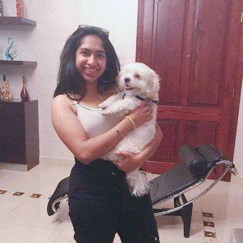 Karishma Pet hotel experience in real homes! 2