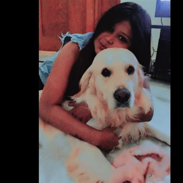 Lopa Pet hotel experience in real homes! 1