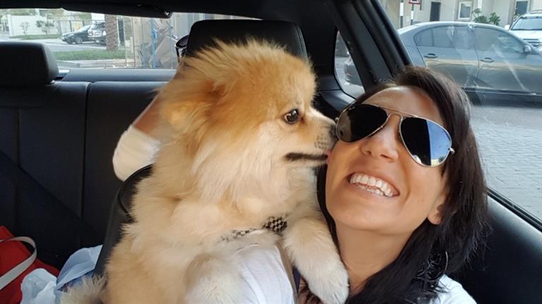 Samah Dog boarding, Pet Boarding, Dog Walking and Pet Sitting.