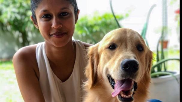 Stephanya Dog boarding, Pet Boarding, Dog Walking and Pet Sitting.