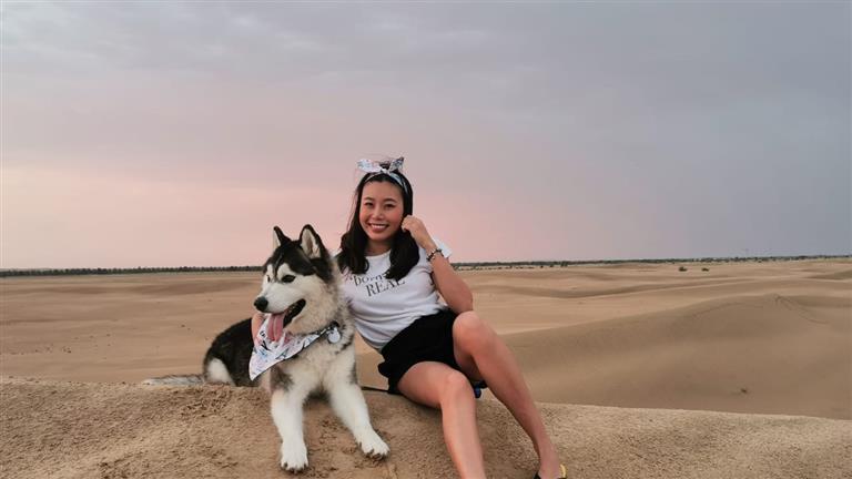 Ploy Dog boarding, Pet Boarding, Dog Walking and Pet Sitting.