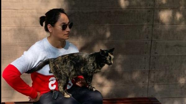 Jeanne Dog boarding, Pet Boarding, Dog Walking and Pet Sitting.