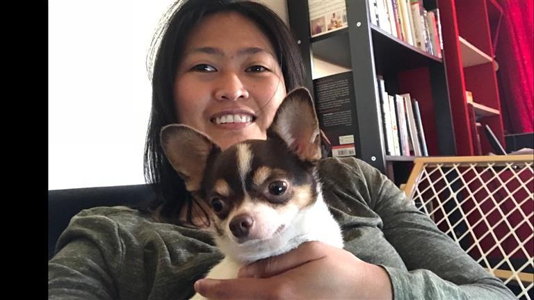 Melissa Dog boarding, Pet Boarding, Dog Walking and Pet Sitting.