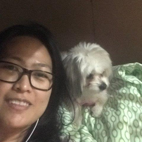 Melissa Pet hotel experience in real homes! 1