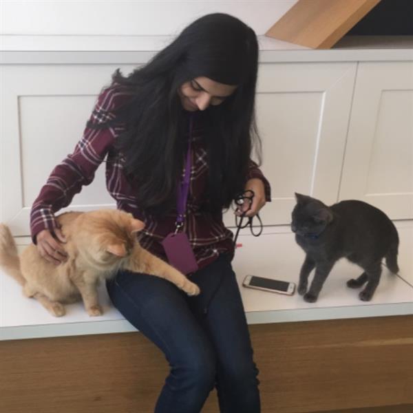 Rabiah Pet hotel experience in real homes! 2