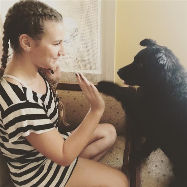 Tamara Pet hotel experience in real homes! 2