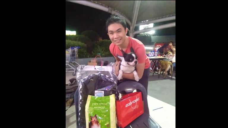 Levy Dog boarding, Pet Boarding, Dog Walking and Pet Sitting.