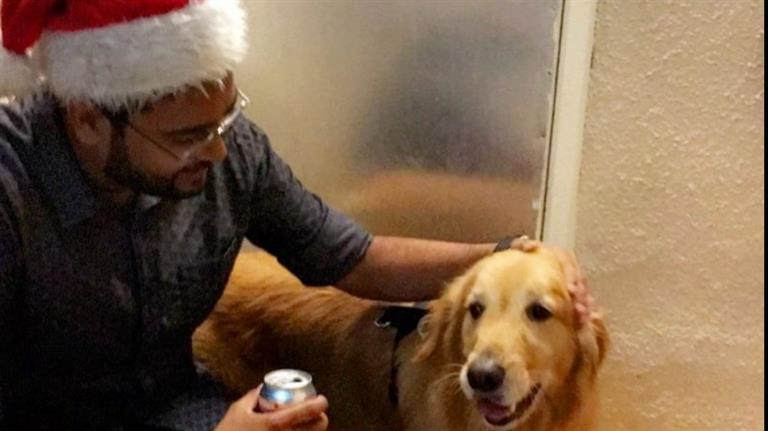 Ajay Dog boarding, Pet Boarding, Dog Walking and Pet Sitting.
