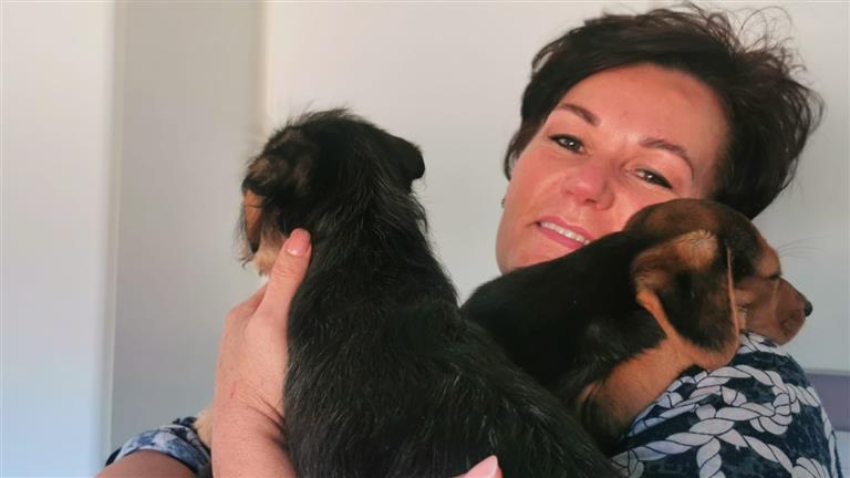 Jackie Dog boarding, Pet Boarding, Dog Walking and Pet Sitting.