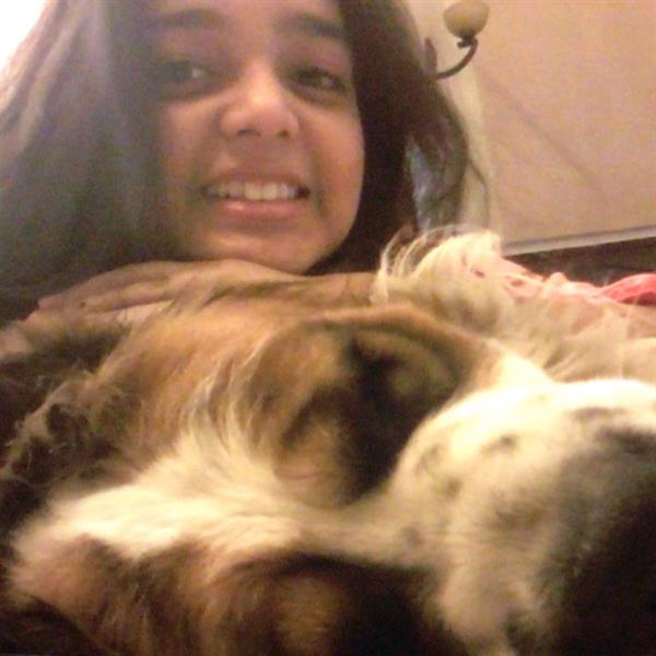 Riddhima Pet hotel experience in real homes! 1