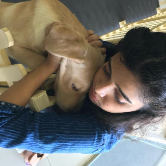 Riddhima Pet hotel experience in real homes! 3