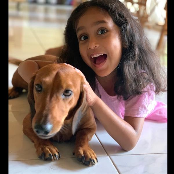 Mayanthi Pet hotel experience in real homes! 2
