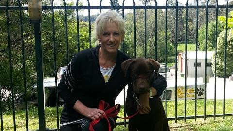 Helena Dog boarding, Pet Boarding, Dog Walking and Pet Sitting.