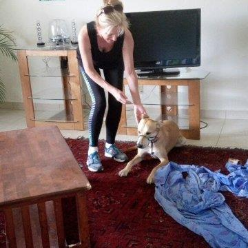 Helena Pet hotel experience in real homes! 2