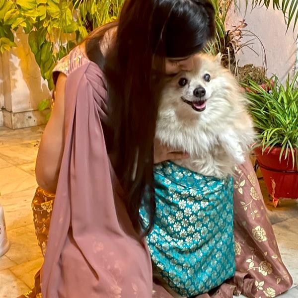 Aarohi Pet hotel experience in real homes! 2