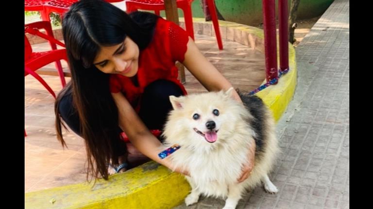 Aarohi Dog boarding, Pet Boarding, Dog Walking and Pet Sitting.