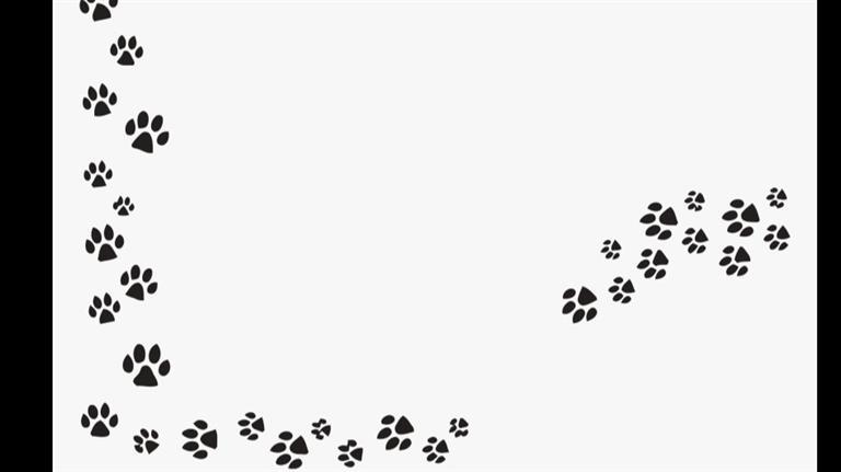 ekbal Dog boarding, Pet Boarding, Dog Walking and Pet Sitting.